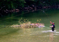 Sport fishing (Fly Fishing) - Pr' Bevc, Bohinjska Bela - Slovenia